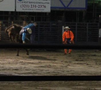 Rodeo2