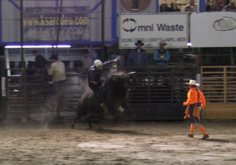 Rodeo6